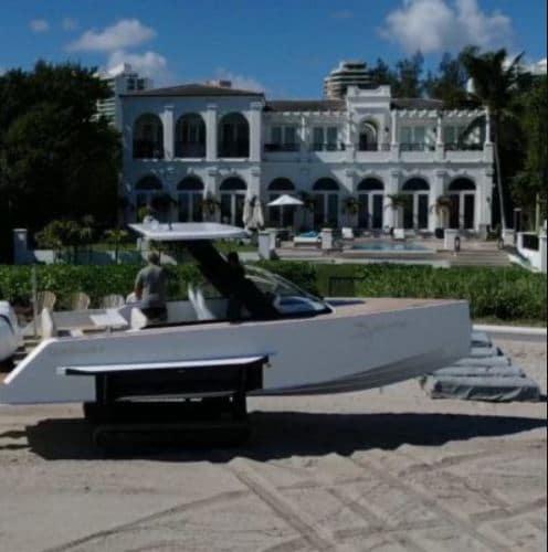 Iguana devant un hôtel en bord de mer